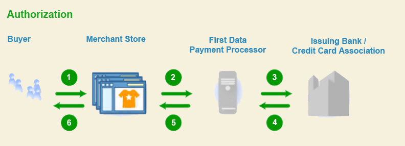 Card processing-authorization process infographic